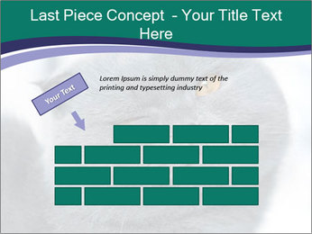 0000084532 PowerPoint Template - Slide 46