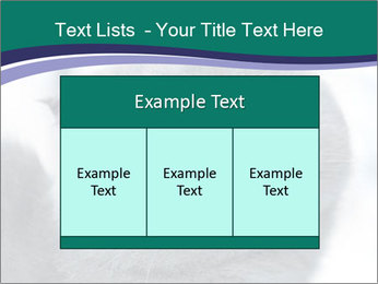 0000084532 PowerPoint Template - Slide 59
