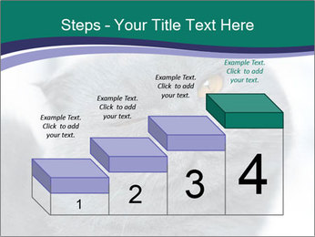 0000084532 PowerPoint Template - Slide 64