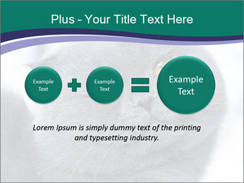 0000084532 PowerPoint Template - Slide 75
