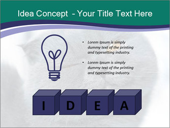0000084532 PowerPoint Template - Slide 80