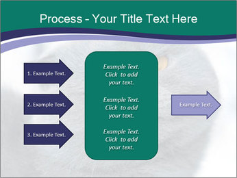 0000084532 PowerPoint Template - Slide 85