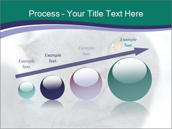 0000084532 PowerPoint Template - Slide 87