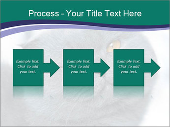 0000084532 PowerPoint Template - Slide 88