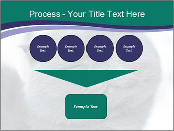 0000084532 PowerPoint Template - Slide 93