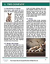 0000084532 Word Template - Page 3