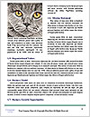 0000084532 Word Templates - Page 4
