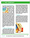 0000084535 Word Template - Page 3
