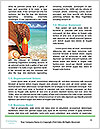 0000084535 Word Templates - Page 4