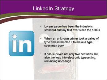 0000084539 PowerPoint Template - Slide 12