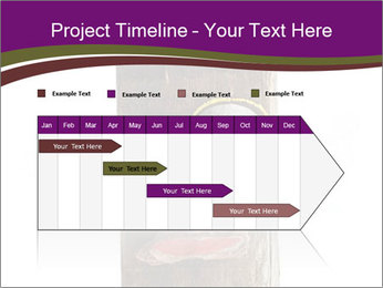 0000084539 PowerPoint Template - Slide 25