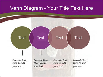 0000084539 PowerPoint Templates - Slide 32