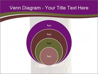 0000084539 PowerPoint Templates - Slide 34
