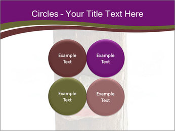 0000084539 PowerPoint Templates - Slide 38