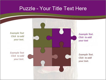 0000084539 PowerPoint Templates - Slide 43