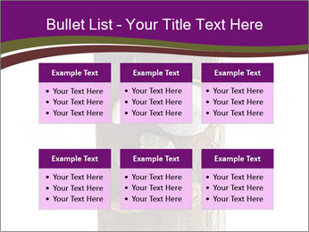 0000084539 PowerPoint Templates - Slide 56