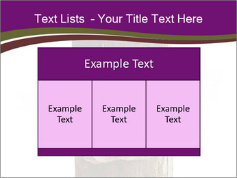 0000084539 PowerPoint Templates - Slide 59