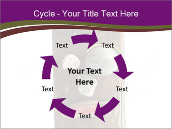 0000084539 PowerPoint Templates - Slide 62