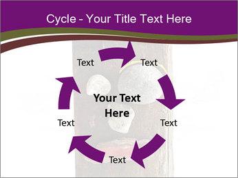 0000084539 PowerPoint Template - Slide 62