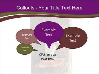 0000084539 PowerPoint Template - Slide 73