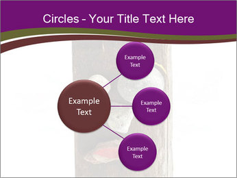 0000084539 PowerPoint Templates - Slide 79