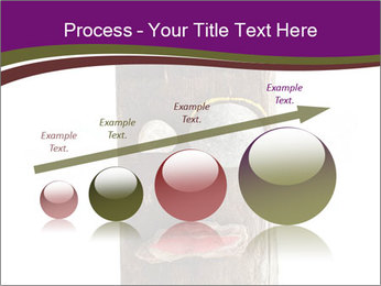 0000084539 PowerPoint Templates - Slide 87