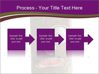 0000084539 PowerPoint Template - Slide 88
