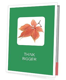 0000084548 Presentation Folder