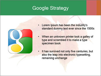 0000084548 PowerPoint Template - Slide 10