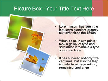 0000084548 PowerPoint Template - Slide 17