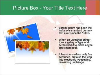 0000084548 PowerPoint Template - Slide 20