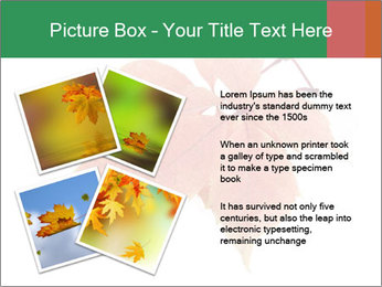 0000084548 PowerPoint Template - Slide 23