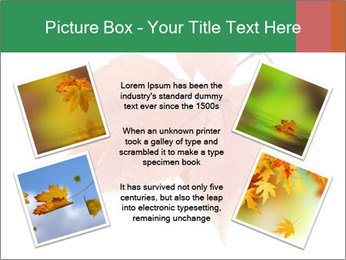 0000084548 PowerPoint Template - Slide 24