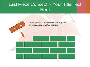 0000084548 PowerPoint Template - Slide 46