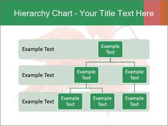 0000084548 PowerPoint Template - Slide 67