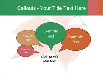 0000084548 PowerPoint Template - Slide 73
