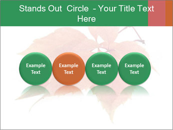 0000084548 PowerPoint Template - Slide 76