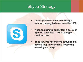 0000084548 PowerPoint Template - Slide 8