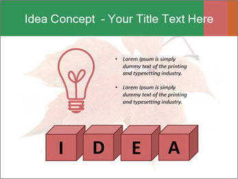 0000084548 PowerPoint Template - Slide 80