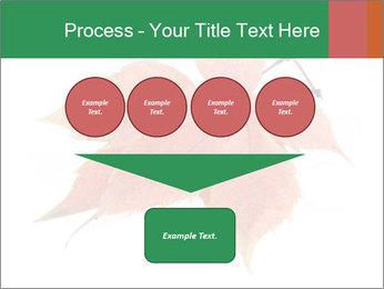 0000084548 PowerPoint Template - Slide 93