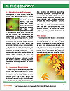 0000084548 Word Template - Page 3