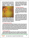 0000084548 Word Template - Page 4