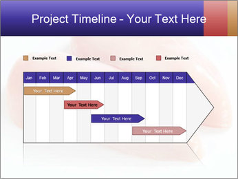 0000084561 PowerPoint Template - Slide 25