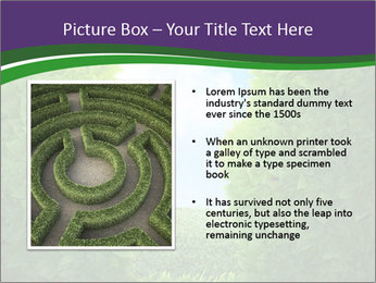 0000084562 PowerPoint Template - Slide 13