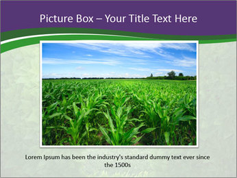 0000084562 PowerPoint Template - Slide 15