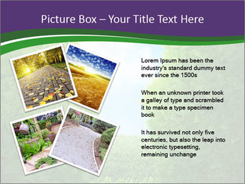 0000084562 PowerPoint Template - Slide 23