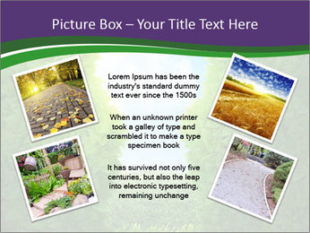 0000084562 PowerPoint Template - Slide 24