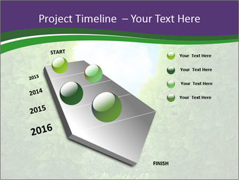 0000084562 PowerPoint Template - Slide 26