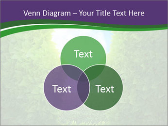 0000084562 PowerPoint Template - Slide 33