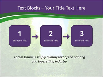 0000084562 PowerPoint Template - Slide 71